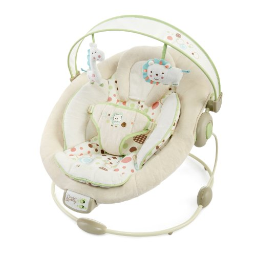 Bright Starts Comfort and Harmony Cradling Bouncer