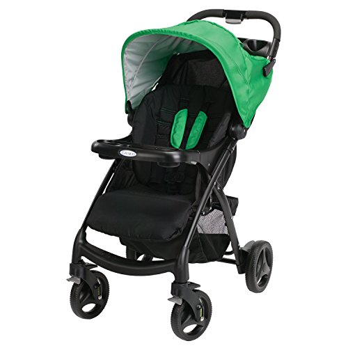 Graco Verb Click Connect Stroller (Fern)