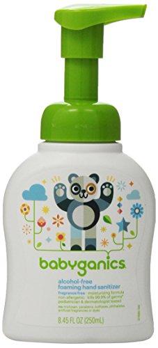 BabyGanics Alchohol Free Foaming Hand Sanitizer