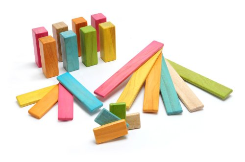 Tegu Endeavor Magnetic Wooden Block Set