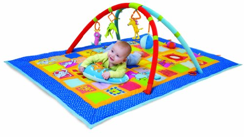 Taf Toys Curiosity Activity Gym and Play Mat