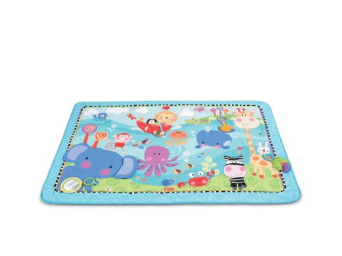 Fisher-Price Discover 'n Grow Play Mat