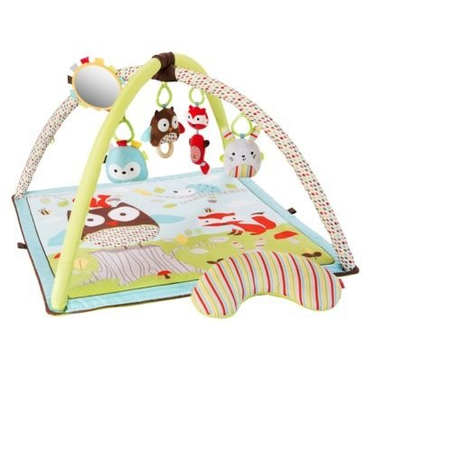 Skip Hop Woodland Friends Activity Gym