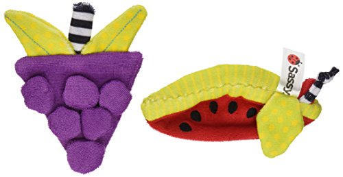 Sassy Washcloth Teethers