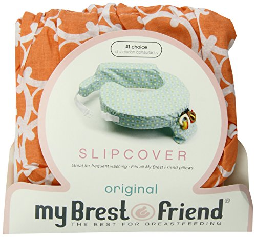 My Brest Friend Slipcover