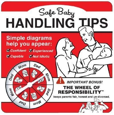 Safe Baby Handling Tips Board Book
