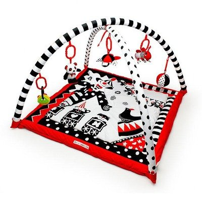 Genius Babies Activity Playmat and Gym