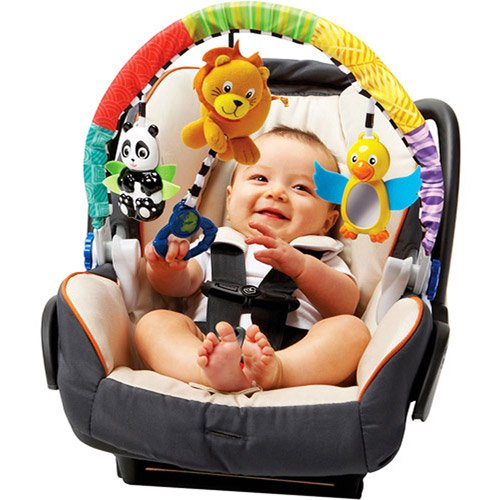 Baby Einstein Around the World Activity Arch