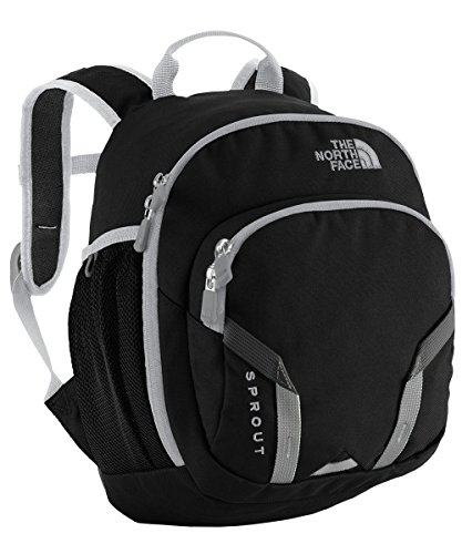 The North Face Unisex Sprout (Big Kid) TNF Black/High Rise Grey Backpack